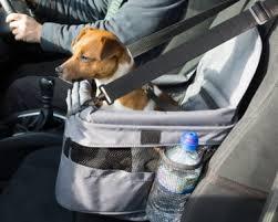 dog car seat harness uk tag dog car