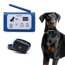 10 Best Wireless Dog Fence Reviews 2020 Edition Top Ten Select