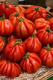 Tomates Heirloom El tomate heirloom... - Sociedad Argentina de ...