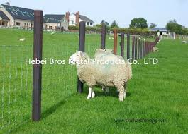 Hot Dipped Galvanized Field Fence High Tensile Woven Wire Fence Rolls