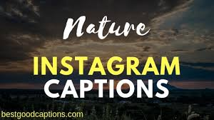 nature captions for instagram and quotes about earth s beauty