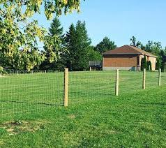 Sheep And Goat Fence Design Installation Johnston Fence Contracting