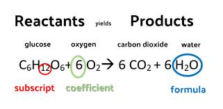 coefficient balanced chemical equation