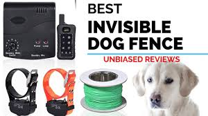 10 Best Invisible Dog Fence The Best Pet Wireless Invisible Fence 2020 Youtube
