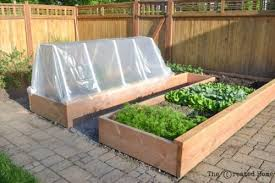 raised garden bed and frost cover