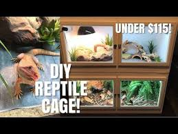 how to build your own reptile enclosure