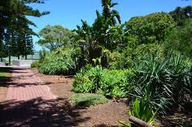 Ada Ryan Gardens - Whyalla