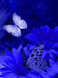 animated beautiful flowers wallpapers