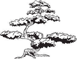 Amazon Com Asian Japanese Bonsai Tree Wall Decal Decor Great Addition To An Asian Theme Room 6ft Tall Black Color 72in Tall X 92in Wide 344a Kitchen Dining