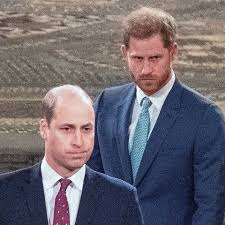 Prince William Thinks Prince Harry Disrespected the Monarchy