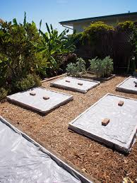 soil solarization in raised beds