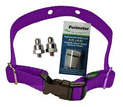 Invisible Fence Microlite Dog Fence Collar Refreshment Kit