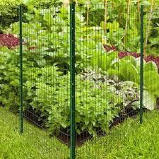 Blue Hawk 3 1 2 In X 4 Ft Powder Coated Steel Garden Fence U Post Lowes Com Garden Fence Fence Styles Garden Inspiration