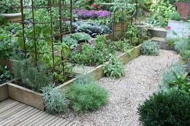 build and plant raised beds