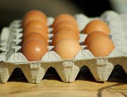 صور لـ كرتونة بيض بيض الدجاج مطبخ