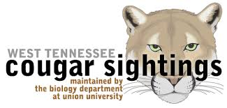 West Tennessee Cougar Sightings
