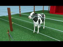 How Electric Fencing Works Youtube