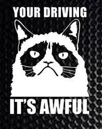 Free Grumpy Cat Vinyl Decal Bumper Sticker Other Car Items Listia Com Auctions For Free Stuff