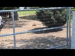Stainless Steel Garage Gate Design Clifton Nj 800 576 5919 Youtube