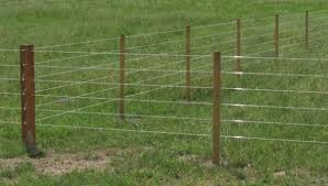 Bayco Finish Line Horse Fence Reviews It S Quite Durable Horse Is Love