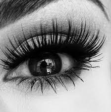 makeup artist lucas county oh