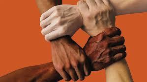 """Résultat de recherche d'images pour """"la solidarité fraternelle"""""""