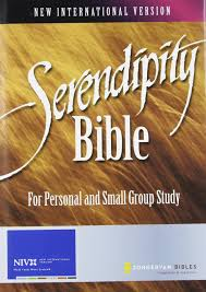Serendipity Bible: For Personal and Small Group Study: Lyman Coleman:  9780310937333: Amazon.com: Books