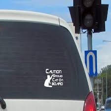 Caution Spoiled Cat On Board Vinyl Car Decal Cat Decal Etsy