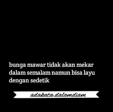 al quotes quotes of the day mawar wattpad