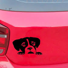 15 9 2cm Peeking Boxer Lovely Dog Cute Interesting Pet Bumper Sticker Funny Car Window Sticker Car Accessories Vinyl Decal Shop The Nation