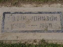 Lillie Johnson (1868-1950) - Find A Grave Memorial