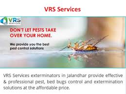 Residential Pest Control Services | VRS Services