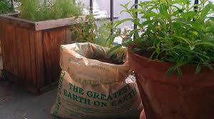 potatoes anywhere with a sack and some soil
