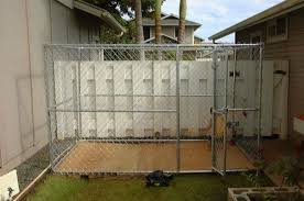 Should I Build Or Buy A Dog Kennel Run Pethelpful By Fellow Animal Lovers And Experts