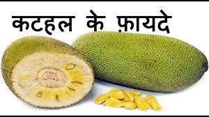 jackfruit कटहल health benefits and