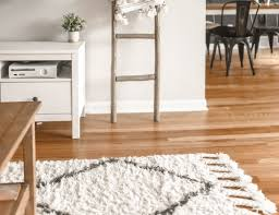 diy tips to clean area rugs classique
