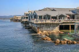 monterey bay aquarium visitor guide