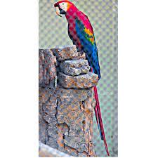 Thiruvananthapuram Zoo Instagram posts - Picuki.com