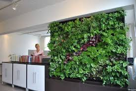 new hampshire living plant wall design