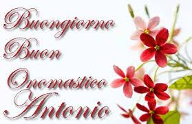 Sant Antonio: origini nome, immagini festa, frasi, video auguri