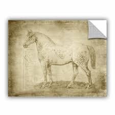 Williston Forge Fenton Horse Anatomy 101 Removable Wall Decal Wayfair