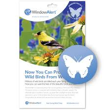 Butterfly Decal Envelope 4 Decals Windowalert