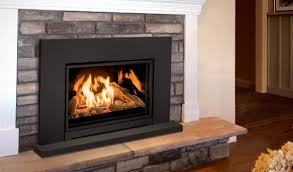 e30 short gas fireplace insert