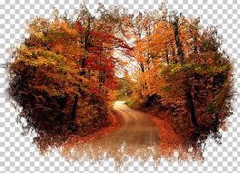 desktop autumn display resolution