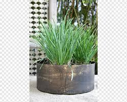 chives bronze drum vase design