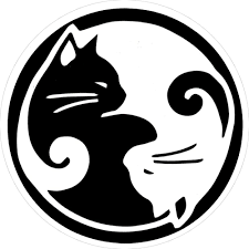 Amazon Com Peace Resource Project Yin Yang Cats Small Bumper Sticker Or Laptop Decal 3 Circular Automotive