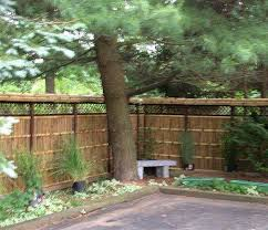Bamboo Grove Photo Bamboo Fence Panels