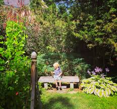 in emily s garden jillian s caddell