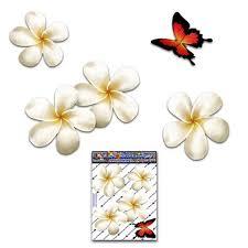 Frangipani Plumeria Flowersbutterfly Animal Small Pack Car Etsy