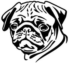 Amazon Com Js Artworks Cute Pug Face Vinyl Decal Sticker Black Automotive